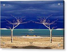 The Dancing Trees  02 Acrylic Print by Arik Baltinester