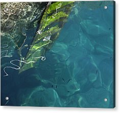 Acrylic Print featuring the photograph The Deep by Pat Purdy