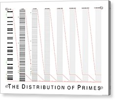 The Distribution Of Primes Acrylic Print by Martin Weissman