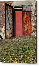The Door Acrylic Print by Alan Skonieczny