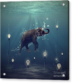 The Dreamer Acrylic Print by Martine Roch
