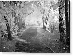 The Dreams Of October Acrylic Print