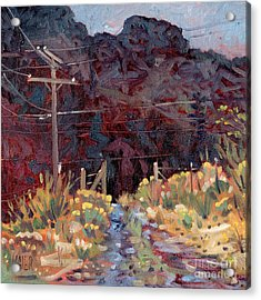 The Driveway Acrylic Print by Donald Maier