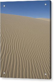 The Dune Acrylic Print by Tara Lynn