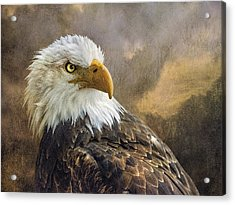 The Eagle's Stare Acrylic Print