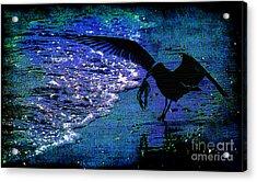 The Early Bird Acrylic Print