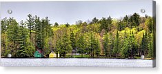 The Early Greens Of Spring Acrylic Print by David Patterson