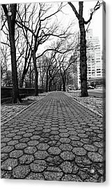 Acrylic Print featuring the photograph The Edge Of The Upper East Side by Lora Lee Chapman