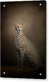 The Elegant Cheetah Acrylic Print