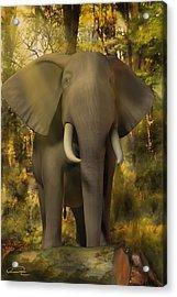 The Elephant Acrylic Print by Emma Alvarez