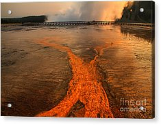 The Enchantment Of Grand Prismatic Spring Acrylic Print