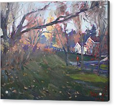 The End Of Autumn Day In Glen Williams On Acrylic Print