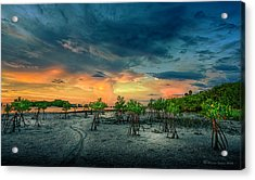 The Endless Trail Acrylic Print by Marvin Spates