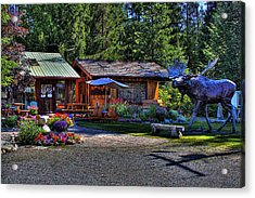 The Entree Gallery II Acrylic Print by David Patterson