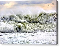 The Escape Acrylic Print by Olivier Le Queinec