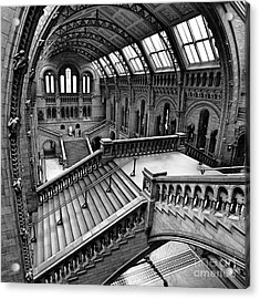 The Escher View Acrylic Print