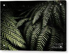 The Exotic Dark Jungle Acrylic Print