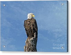 The Eye Of Freedom Acrylic Print