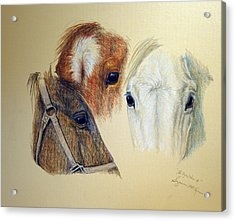 Acrylic Print featuring the drawing The Eyes Have It by Suzanne McKee