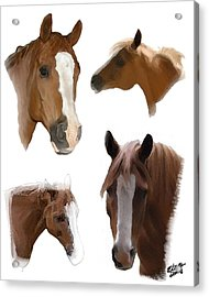 The Faces Of T Acrylic Print by Elzire S