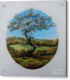 The Fairy Tree Acrylic Print by Avril Brand