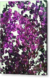 The Fall - Intense Fuchsia Acrylic Print