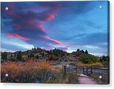 Acrylic Print featuring the photograph The Fall Meadow by Tim Reaves