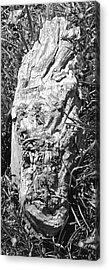 The Fallen - Unhidden Door Acrylic Print