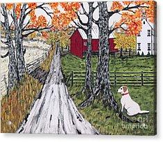 Sadie The Farm Dog Acrylic Print