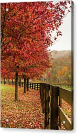 The Farm In Fall Acrylic Print by Sallie Woodring