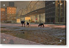 The Fellowship Of Dogs Acrylic Print by Dieter Carlton
