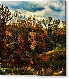 The First Days Of Fall Acrylic Print