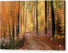 Acrylic Print featuring the photograph The Flickering Forest by Jessica Jenney