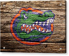 The Florida Gators Acrylic Print by Brian Reaves