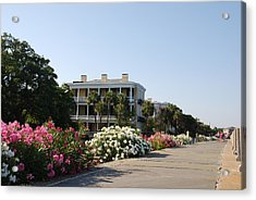 The Flowers At The Battery Charleston Sc Acrylic Print by Susanne Van Hulst