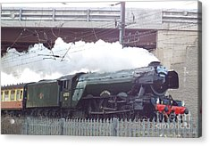 The Flying Scotsman Acrylic Print