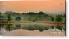 The Fog Of Summer Acrylic Print by Elizabeth Winter
