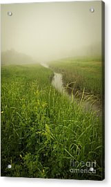 Acrylic Print featuring the photograph The Foggy Trail by Sandy Adams