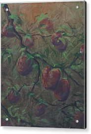 The Forbidden Fruit Acrylic Print by Kenneth McGarity