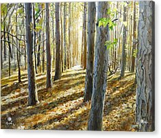 The Forest And The Trees Acrylic Print