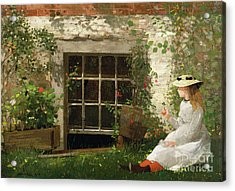 The Four Leaf Clover Acrylic Print by Winslow Homer