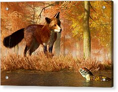 The Fox And The Turtle Acrylic Print by Daniel Eskridge