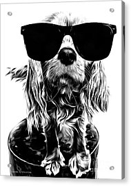 The Future's So Bright, I Gotta Wear Shades Acrylic Print by Edward Fielding