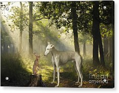 The Galgo And The Hare Acrylic Print