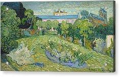 The Garden Of Daubigny Acrylic Print by Vincent van Gogh
