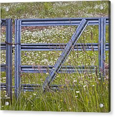 The Gate Acrylic Print by Rebecca Cozart