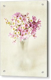 The Gift Acrylic Print by Lisa Russo