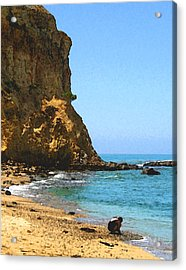 Acrylic Print featuring the digital art The Girl At Abalone Cove by Timothy Bulone