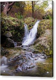 The Glen River Falls Acrylic Print