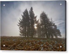 Acrylic Print featuring the photograph The Gloomy Sunrise by Jeremy Lavender Photography